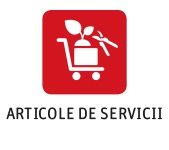 Service articles RO